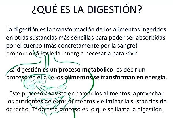 ¿Qué es la digestión?
